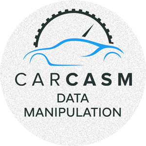 Data Manipulation Logo